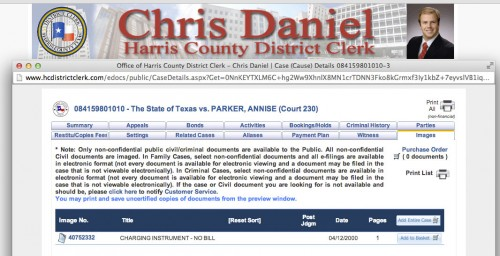screen shot of district clerk annise parker case