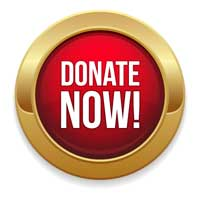hansen-council-donate-button