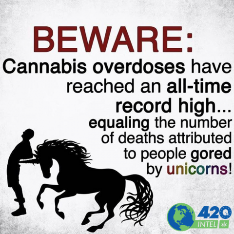 Unicorns and marijuana overdoses